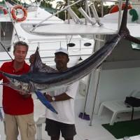 2003, blue marlin, Habana