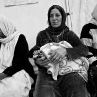 Zakho, Dalal refugee camp: Yazidi IDPs.